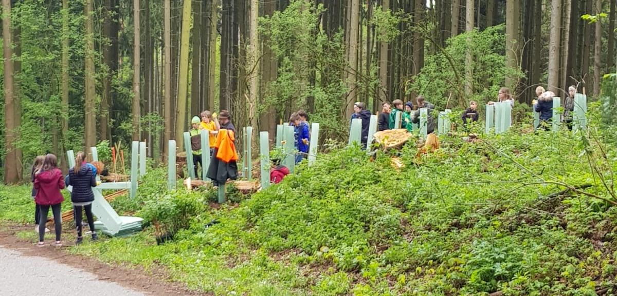 Baumpflanzaktion Mittelschule